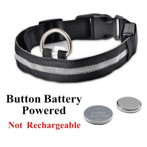 Pet USB Rechargeable Collar
