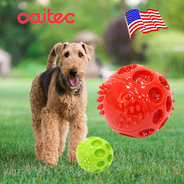 Durable Springy Squeaky Ball