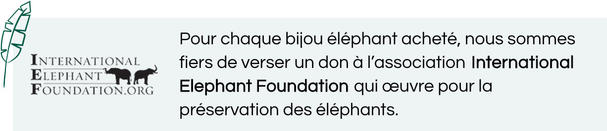 association international elephant foundation
