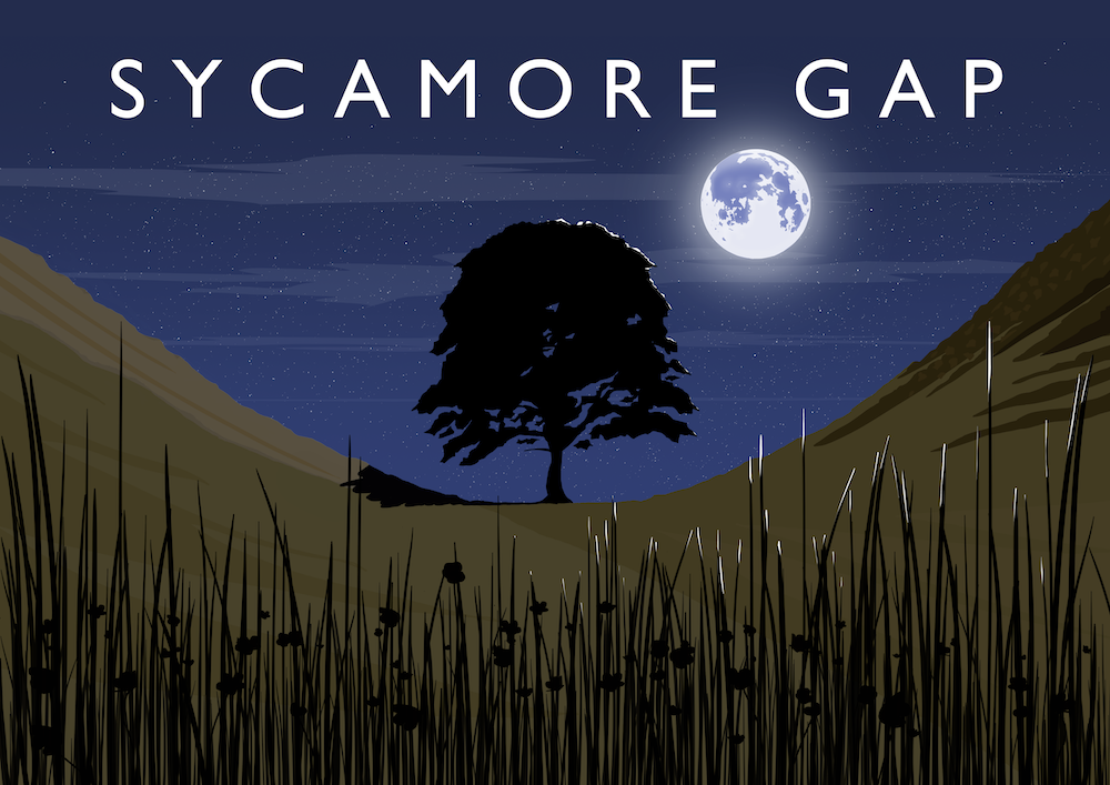 Sycamore Gap Art Print (Night)