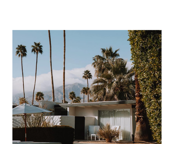 Lifestyle Guide - Palm Springs Edition