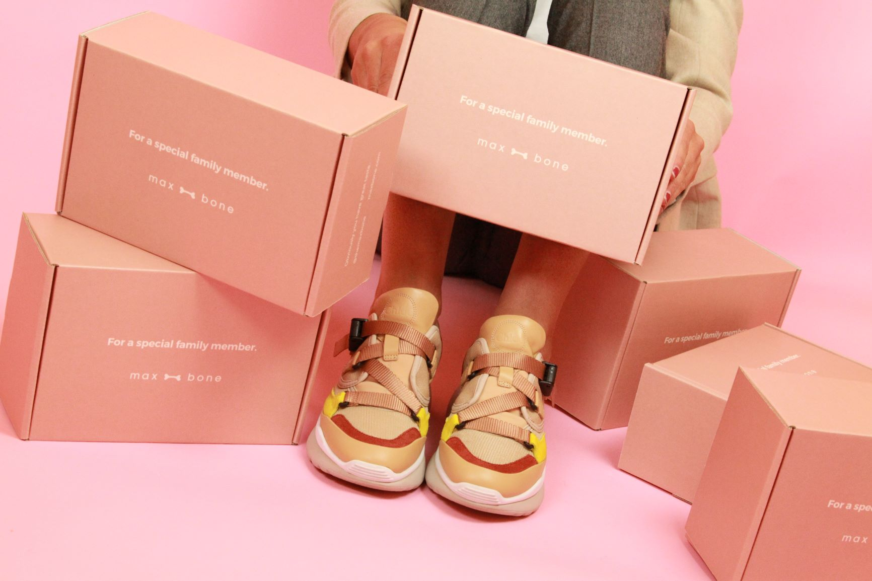 Pink max-bone delivery boxes by a person's shoes