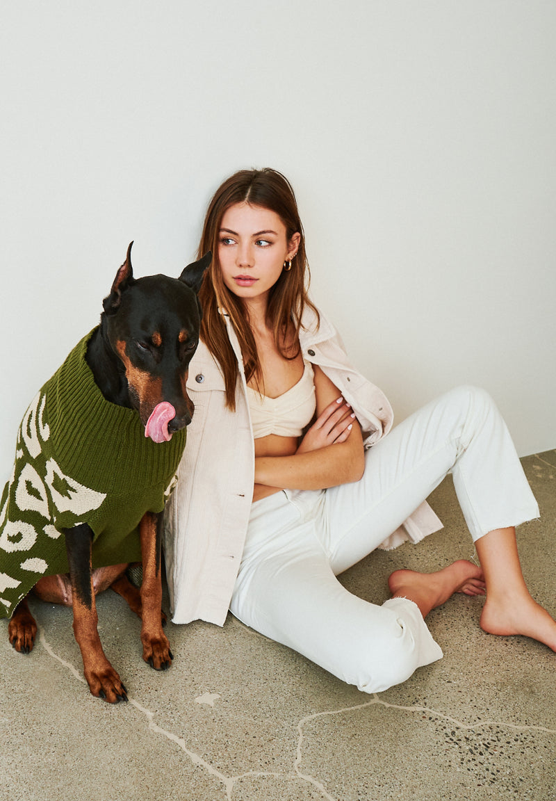 Green ani olive jumper on brown dog sitting next to girl