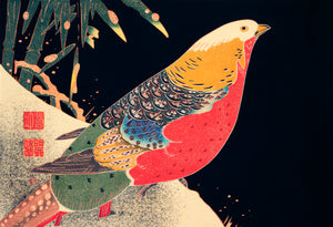 Open image in slideshow, The Golden Pheasant in the Snow