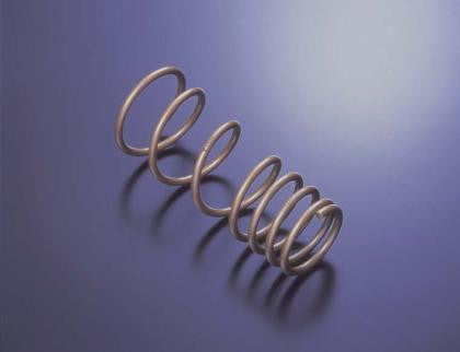 Tein H. Tech Springs - NISSAN (MAXIMA) - Never Ending Details