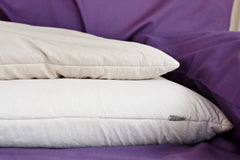 "Buckwheat Pillow ""Organic"" - Dreamdesigns.ca"