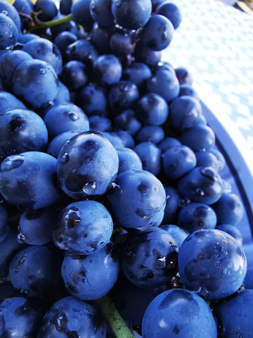 Zi Dobre's blue grapes.