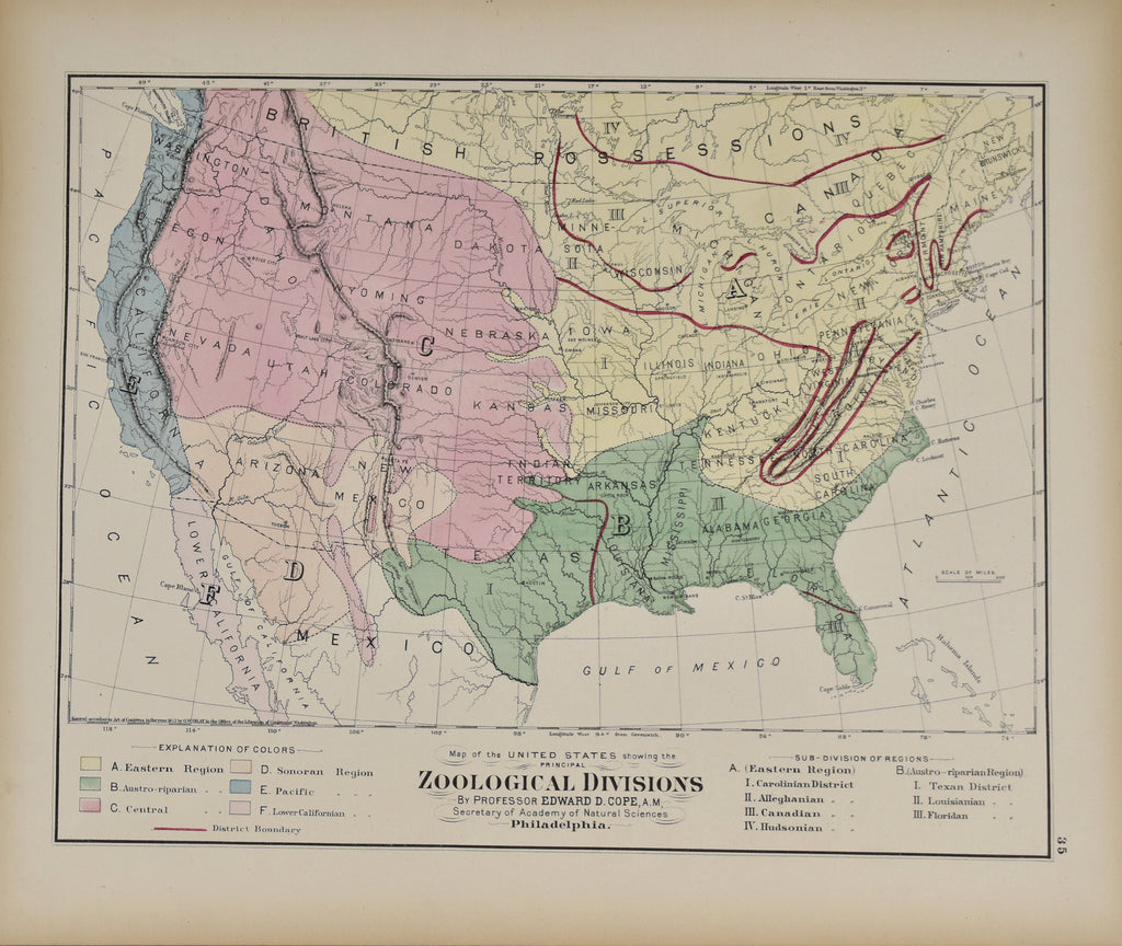 Map of the United States Showing the Zoological Divisions: Gray 1873
