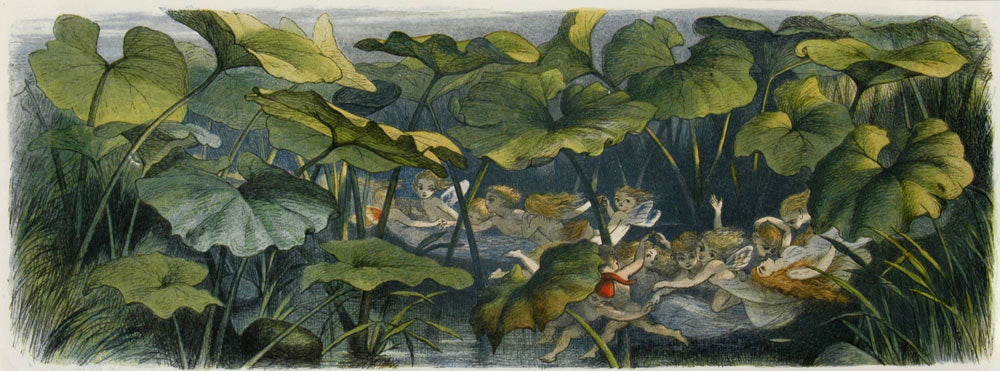 Wood Elves At Play: Richard Doyle 1870