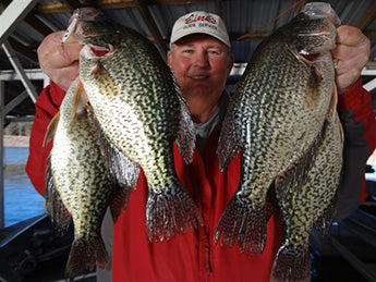 Crappie Sample Pack 2