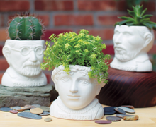 Load image into Gallery viewer, Fertile Minds: Jane Austen Planter