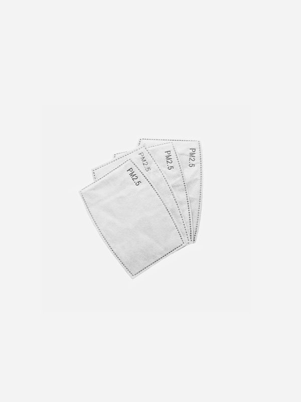 PM2.5 Filter Replacement 10 Pack (4690077057095)