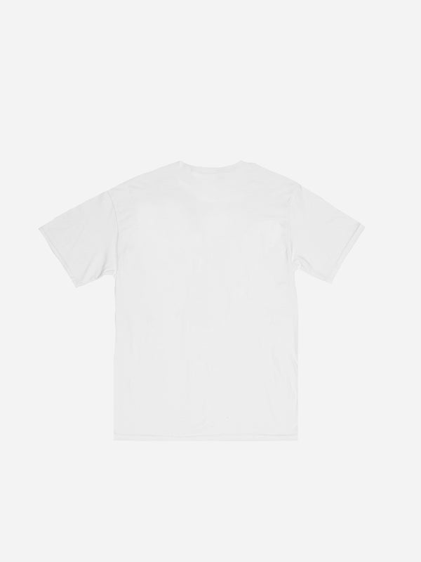 Destroy Racism Graphic Tee in White (4690526437447)