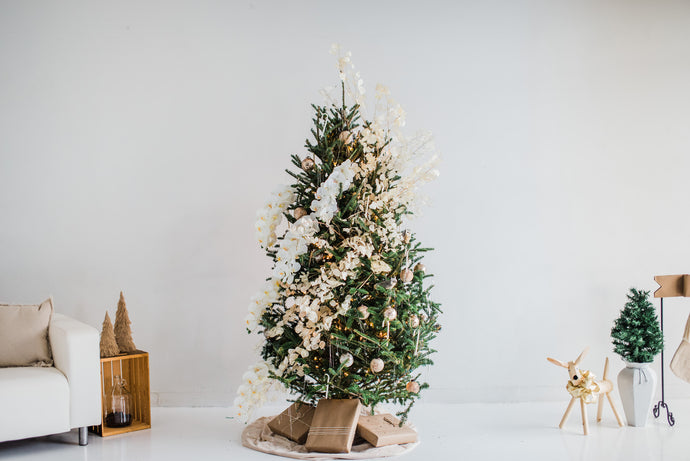 Tips on Holiday Decorating and Implementing Fresh Botanicals!
