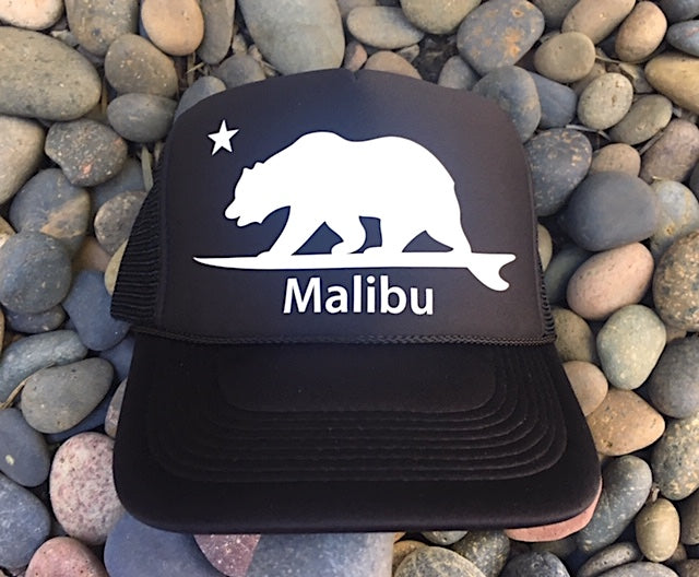 Malibu Surfing bear