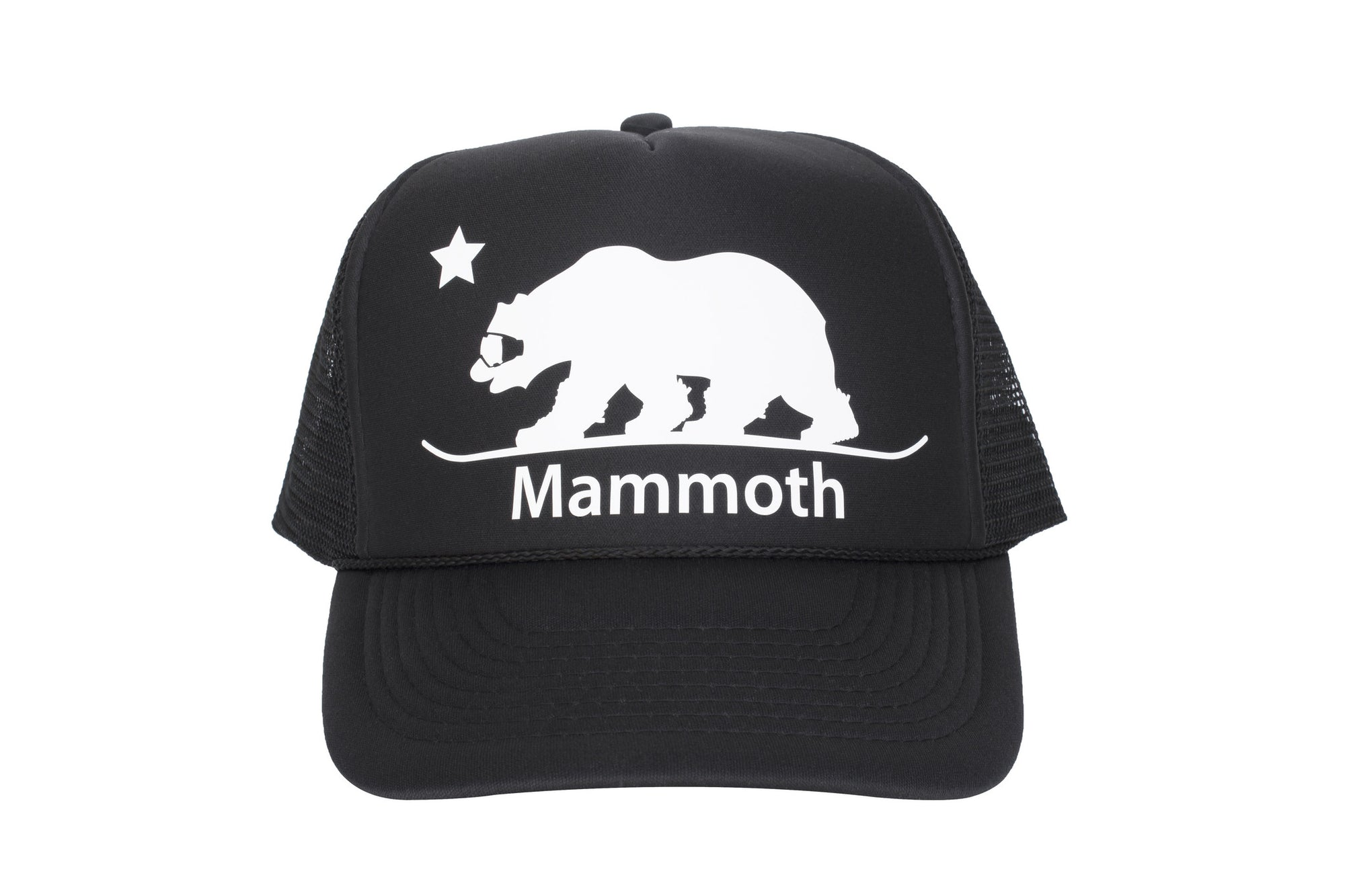 Mammoth Snowboarding Bear