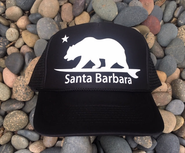 Santa Barbara Surfing Bear