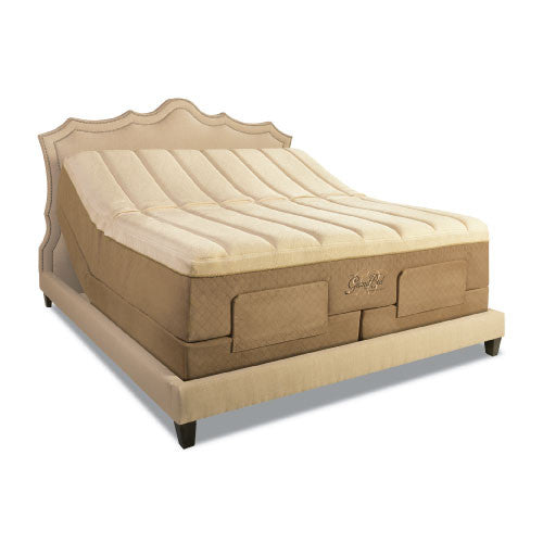Tempur Pedic Ergo Grand Adjustable Base