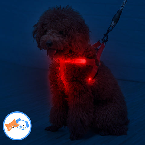Dog LED Safety Harness -  pets n stuff