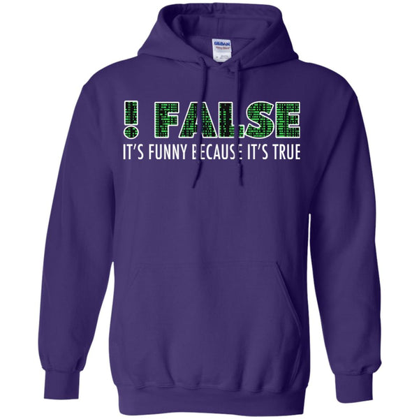 Funny Programming T Shirt Funny Because It's True Hoodie