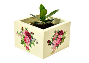 The Weaver's Nest Wooden Hand Painted Box Planter