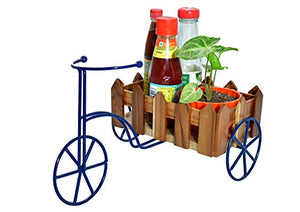 Beautifully Designed Cycle Shaped cart -The Weaver's Nest