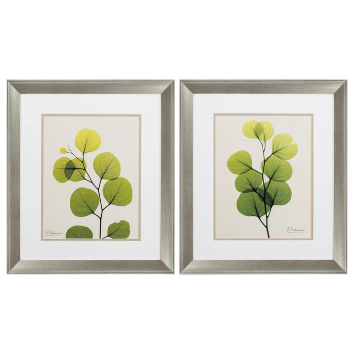 "HomeRoots 19"" X 22"" Brushed Silver Frame Natural Greenery (Set of 2)"