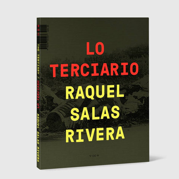 <strong>Raquel Salas Rivera</strong><br />lo terciario / the tertiary