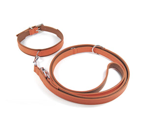 KvK Klassik Halsband Curved - French Orange Edition