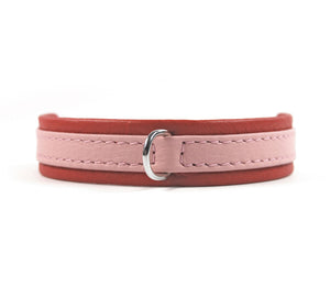 KvK - Classic Collar Curved - Limited Edition