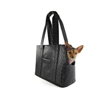 Load image into Gallery viewer, KvK Verdi - Limited Edition - Dog Carrier - Braided look