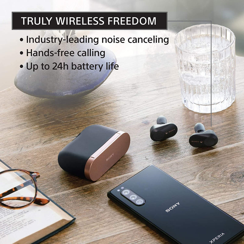 Sony WF-1000XM3 Noise Canceling Wireless Earbuds with Alexa, Black
