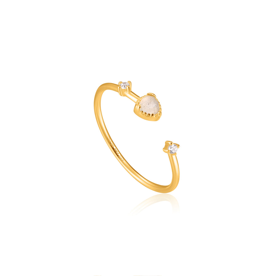 Ania Haie Gold Midnight Adjustable Ring