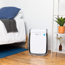 Load image into Gallery viewer, Air Doctor Professional Air Purifier