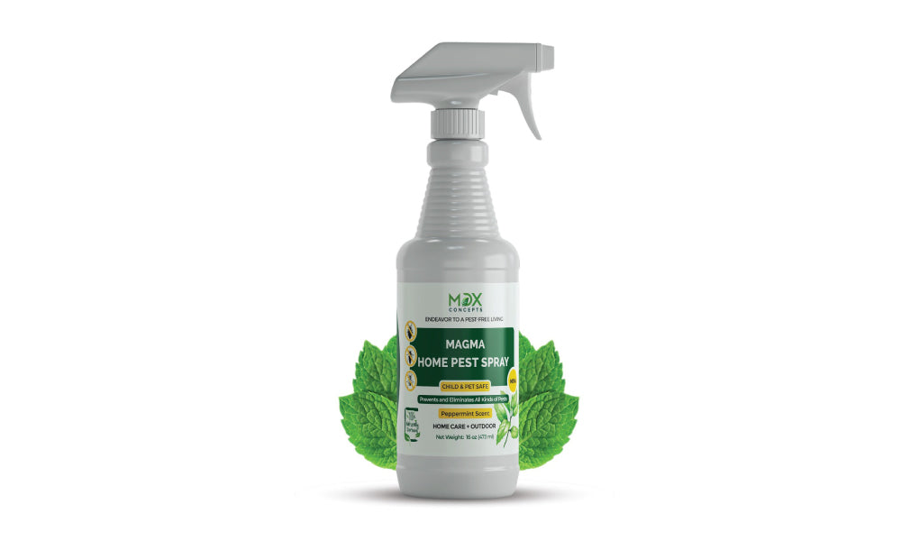 Use a natural and safe home pest control spray
