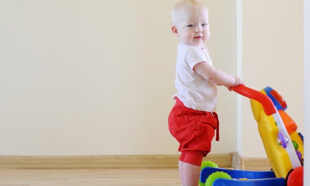 Get Push And Pull Toys