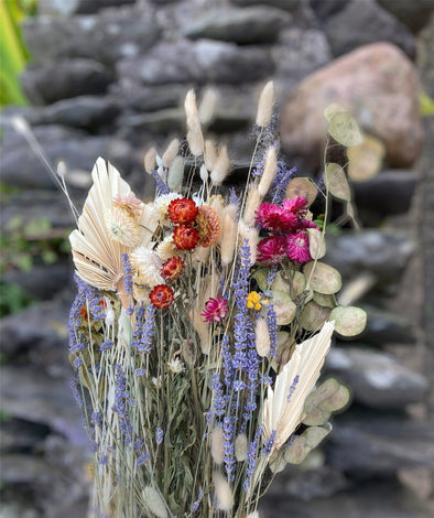 DRIED FLOWER COLLECTION