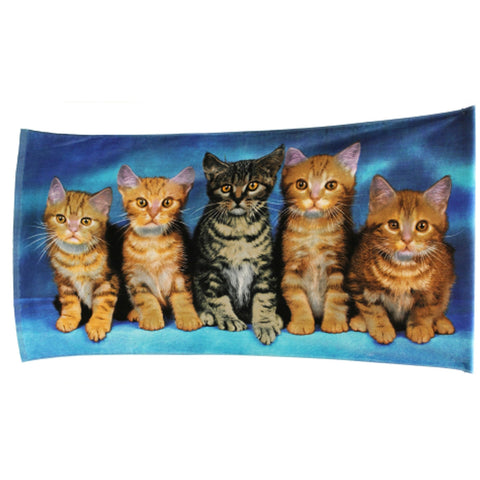 Kittens Velour Beach Towel - Baines Manchester
