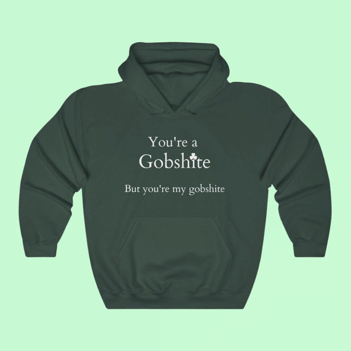 You're A Gobshite But You're My Gobshite - Premium Irish Hoodie-Two Thirds Irish
