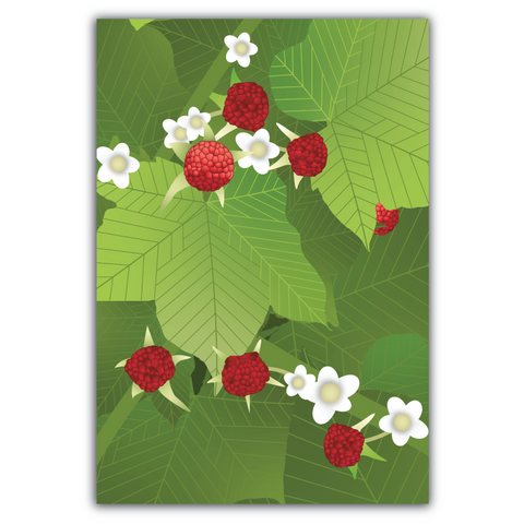 Greeting Card, Thimbleberry