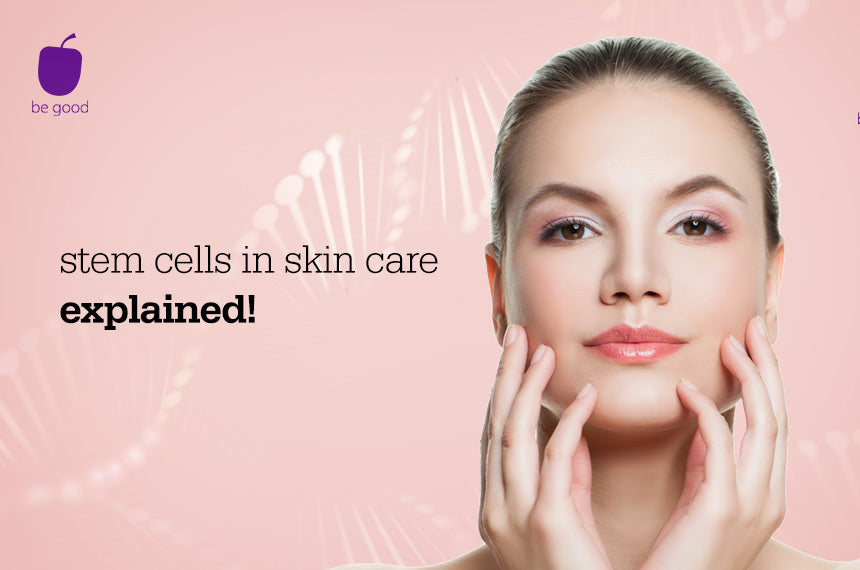 Stem cells in skin care: explained!
