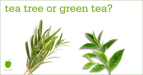 Tea tree or green tea what is difference which is better for skin