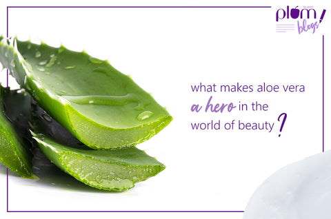 What makes aloe vera a hero in the world of beauty?