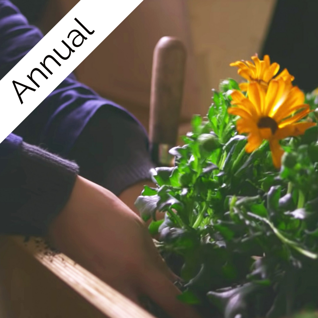 Residential Planting Memberships - Annual