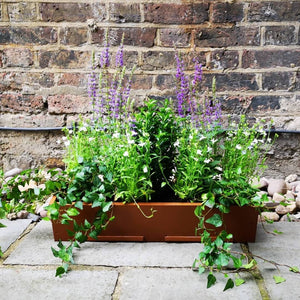 The Curved Window Box