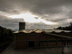 A view over the roof of the Descafecol warehouse