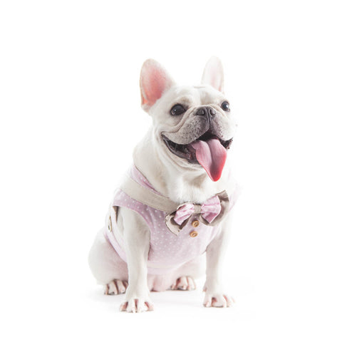 Pink Polka Bow Harness