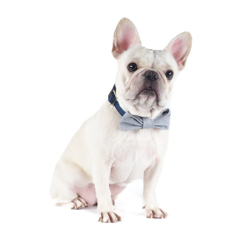 Blue Linen Bow-tie Collar