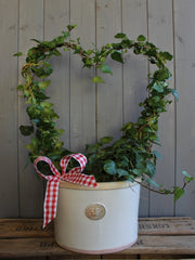 Ivy heart and Kew Botanics pot.