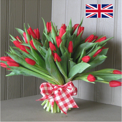 English Tulip Bouquet in red